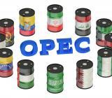Illustration av Opecs 13 medlemsländer. Illustration; Colourbox