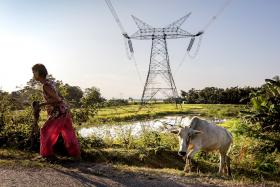 Kraftledningsnät i Indien. Foto: ABB