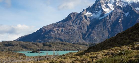 Chilenskt landskap. Foto: Colourbox