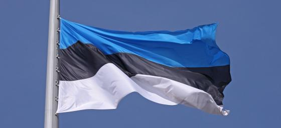 Estniska flaggan. Foto: Colourbox